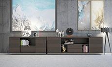 上金 办公家具 实木文件柜 SJ-Borill-AG